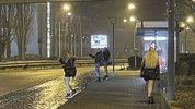 Berichte zu Prostitution in Frankfurt im Freierforum